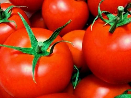 トマトのリコピンは強力な抗酸化作用をもつ!
