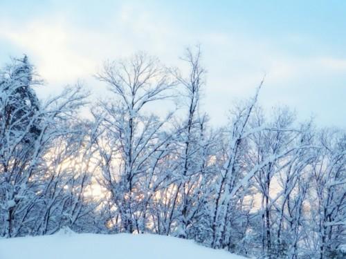 冬は身体を冷やさないように心がける