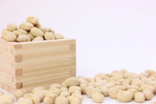 エストロゲンが含まれる大豆製品は美肌効果あり