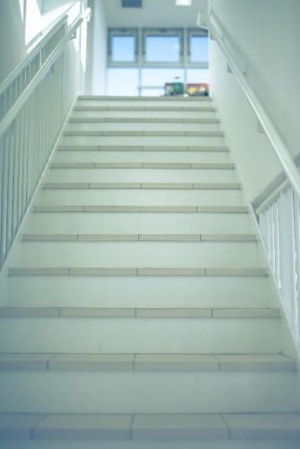 家で簡単にできる!おすすめの「踏み台昇降運動」