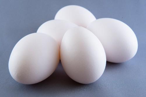 卵には様々な栄養が含まれる