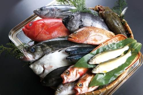 魚に含まれるオメガ3やオメガ6で保湿対策