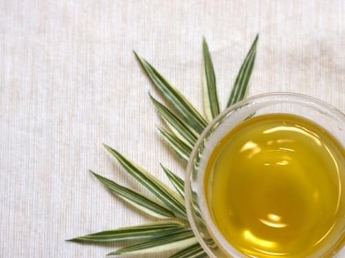 緑茶の栄養成分はがんやHIVを抑制し動脈硬化を防ぐ