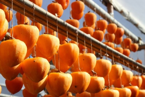 干し柿にすることでさらに栄養アップ!