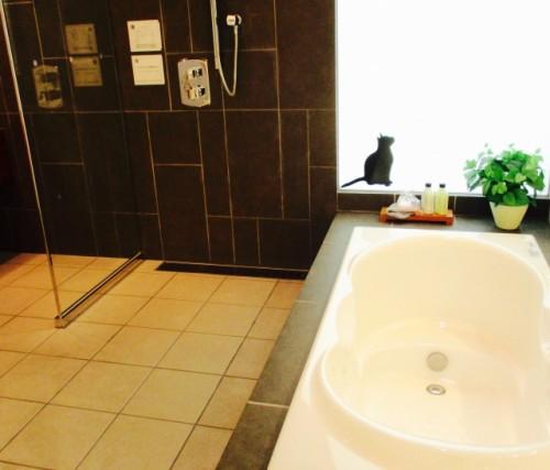 半身浴より反復浴が向いている体質とは?