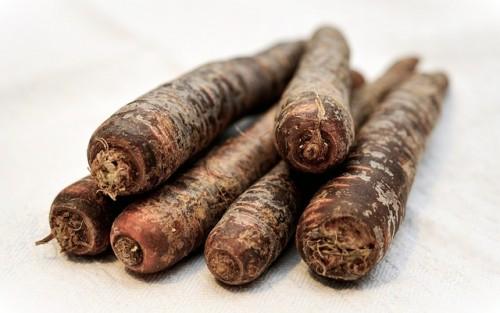 種類豊富な黒い野菜のパワーと効能