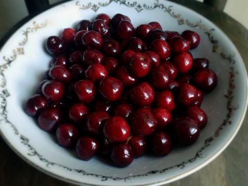 美容効果の高い栄養素を含むクランベリー
