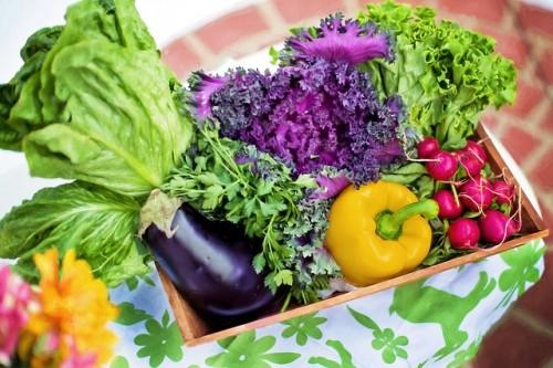 生野菜で食べた方が身体には良い?