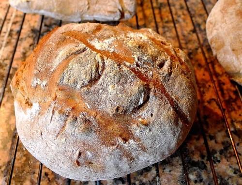 パンはプレーンよりも混ぜパンを選ぶのがおすすめ
