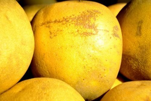 知っておきたいグレープフルーツの持つ美容効果