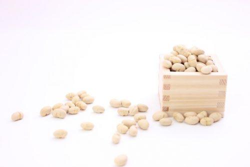 大豆ダイエットは食事に大豆をプラスするだけ!