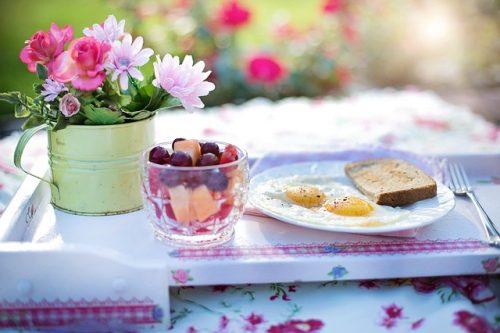 少量の食事で満足感を得ることができるガルニシア
